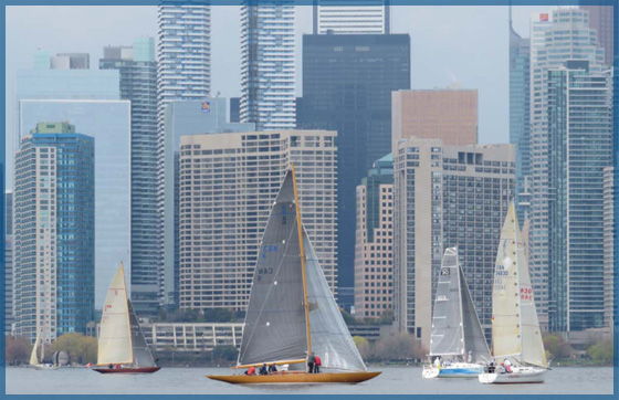 Various types of sailboats on the Toronto harbour with the condo buildings behind for the May 2017 newsletter.