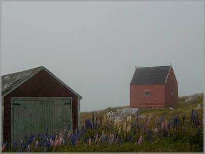 Two buildings  on a hazy spring day for the 2021 May newsletter.